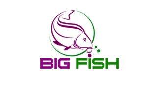 logo big fish