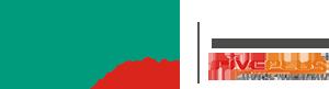 Optimizare Plus Logo